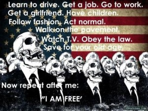 funny-government-fake-freedom